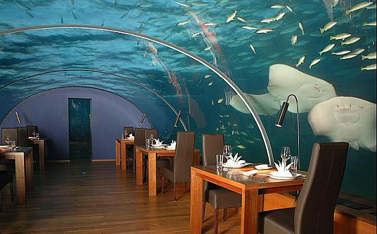 restoran otelya Hilton