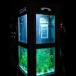 akvariumnyy biznes